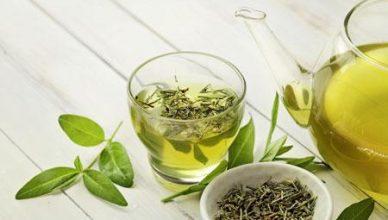 Wady i zalety picia zielonej herbaty