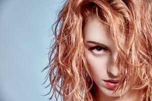 kuracja Bliss Hair