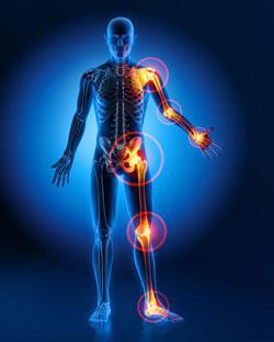 knee-active-plus-działanie